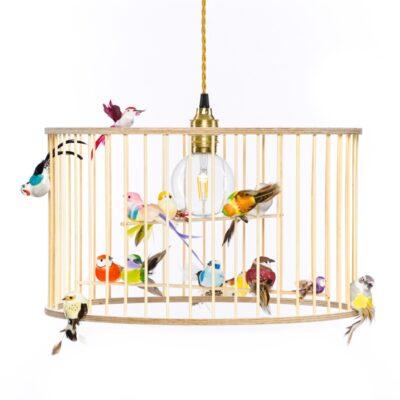 Birdcage lamp pendant light chandelier