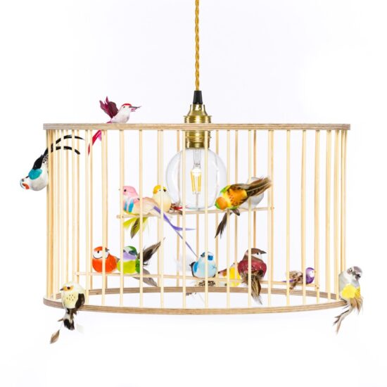 Birdcage lamp pendant light chandelier