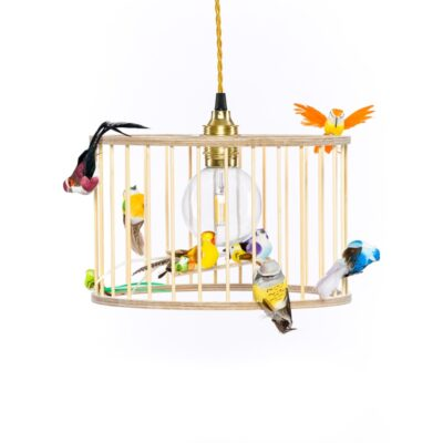 small birdcage pendant light
