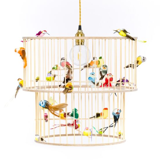 Double birdcage pendant light lamp chandelier